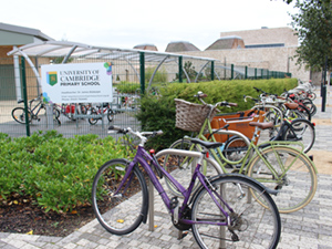 Cycle parking at the University of Cambridge Primary School