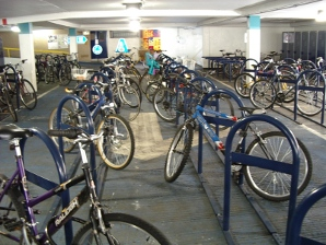 View of some of the cycle racks